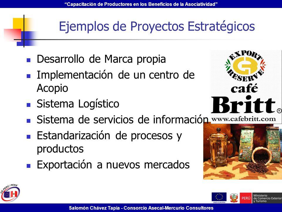 Capacitación de Productores en los Beneficios de la Asociatividad Salomón Chávez Tapia - Consorcio Asecal-Mercurio Consultores Ejemplos de Proyectos E