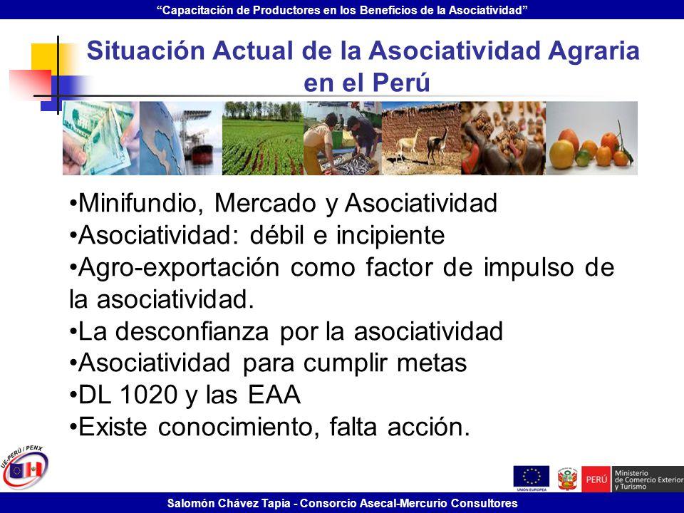 Capacitación de Productores en los Beneficios de la Asociatividad Salomón Chávez Tapia - Consorcio Asecal-Mercurio Consultores Situación Actual de la