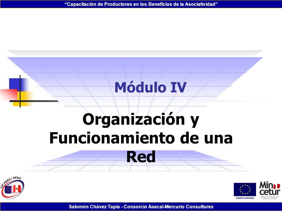 Capacitación de Productores en los Beneficios de la Asociatividad Salomón Chávez Tapia - Consorcio Asecal-Mercurio Consultores Módulo IV Organización