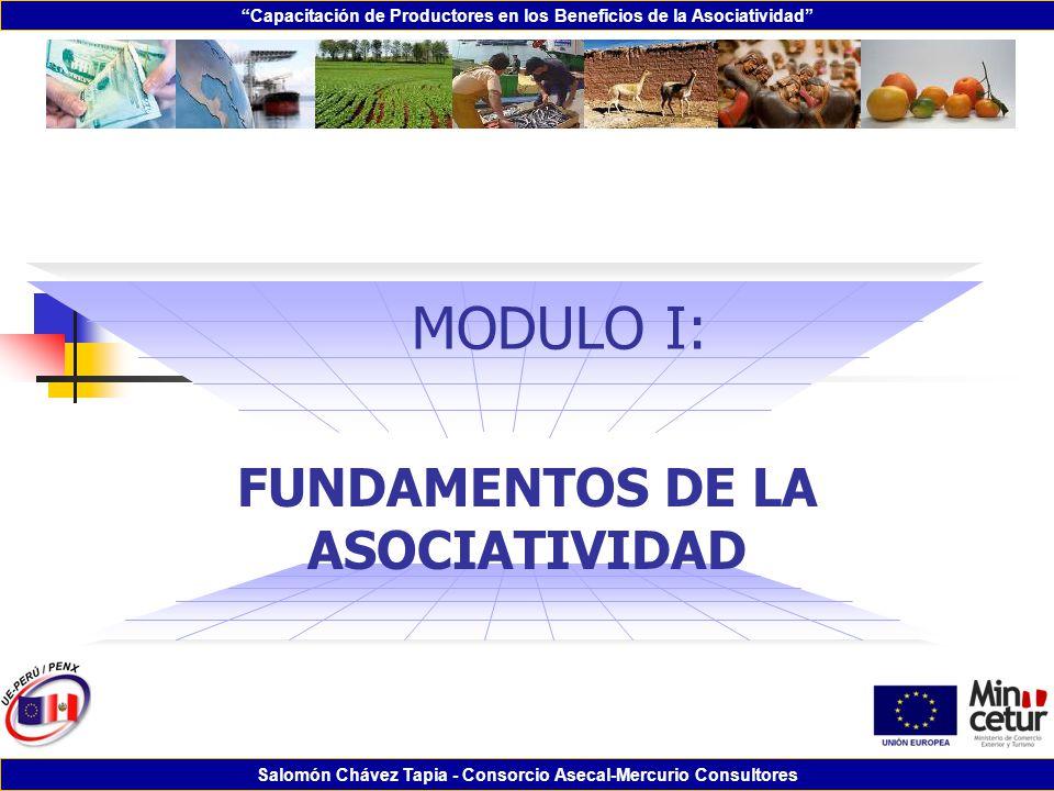 Capacitación de Productores en los Beneficios de la Asociatividad Salomón Chávez Tapia - Consorcio Asecal-Mercurio Consultores MODULO I: FUNDAMENTOS D