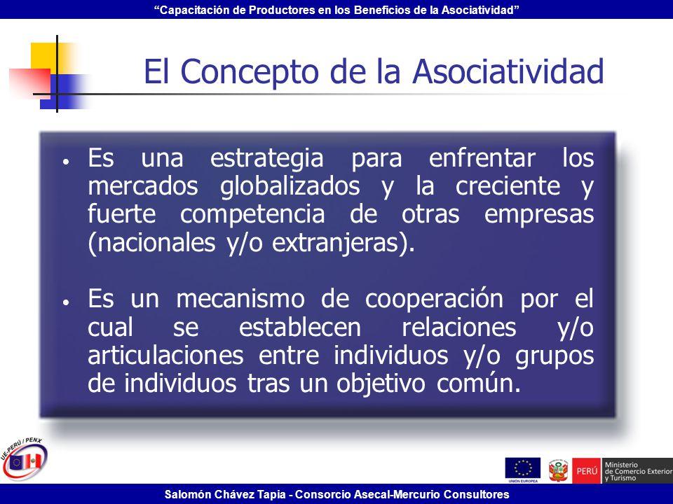 Capacitación de Productores en los Beneficios de la Asociatividad Salomón Chávez Tapia - Consorcio Asecal-Mercurio Consultores El Concepto de la Asoci