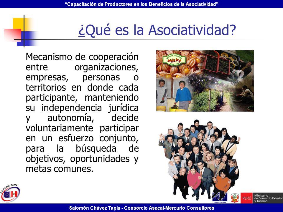Capacitación de Productores en los Beneficios de la Asociatividad Salomón Chávez Tapia - Consorcio Asecal-Mercurio Consultores ¿Qué es la Asociativida