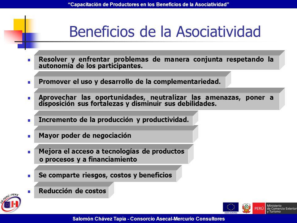 Capacitación de Productores en los Beneficios de la Asociatividad Salomón Chávez Tapia - Consorcio Asecal-Mercurio Consultores Beneficios de la Asocia