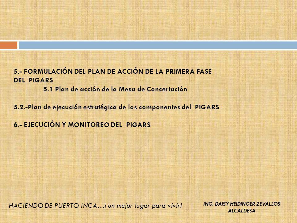 5.- FORMULACIÓN DEL PLAN DE ACCIÓN DE LA PRIMERA FASE DEL PIGARS 5.1 Plan de acción de la Mesa de Concertación 5.2.-Plan de ejecución estratégica de l