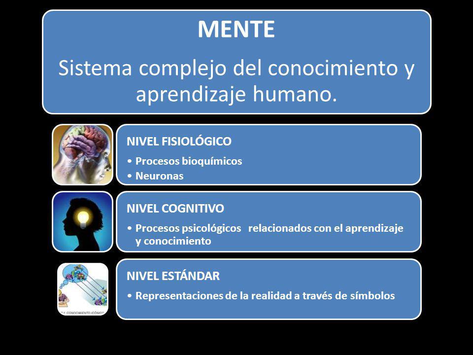 MENTE Sistema complejo del conocimiento y aprendizaje humano. NIVEL FISIOLÓGICO Procesos bioquímicos Neuronas NIVEL COGNITIVO Procesos psicológicos re