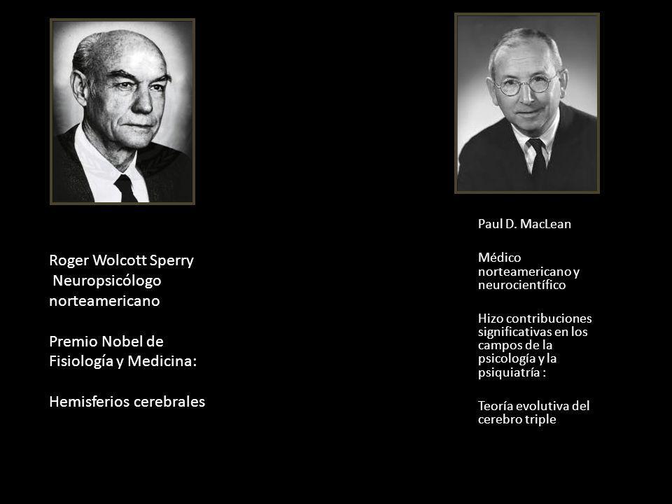 Paul D. MacLean Médico norteamericano y neurocientífico Hizo contribuciones significativas en los campos de la psicología y la psiquiatría : Teoría ev