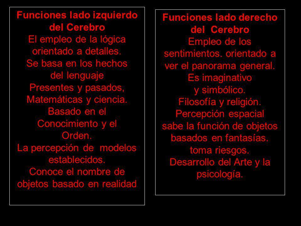Funciones lado izquierdo del Cerebro El empleo de la lógica orientado a detalles. Se basa en los hechos del lenguaje Presentes y pasados, Matemáticas