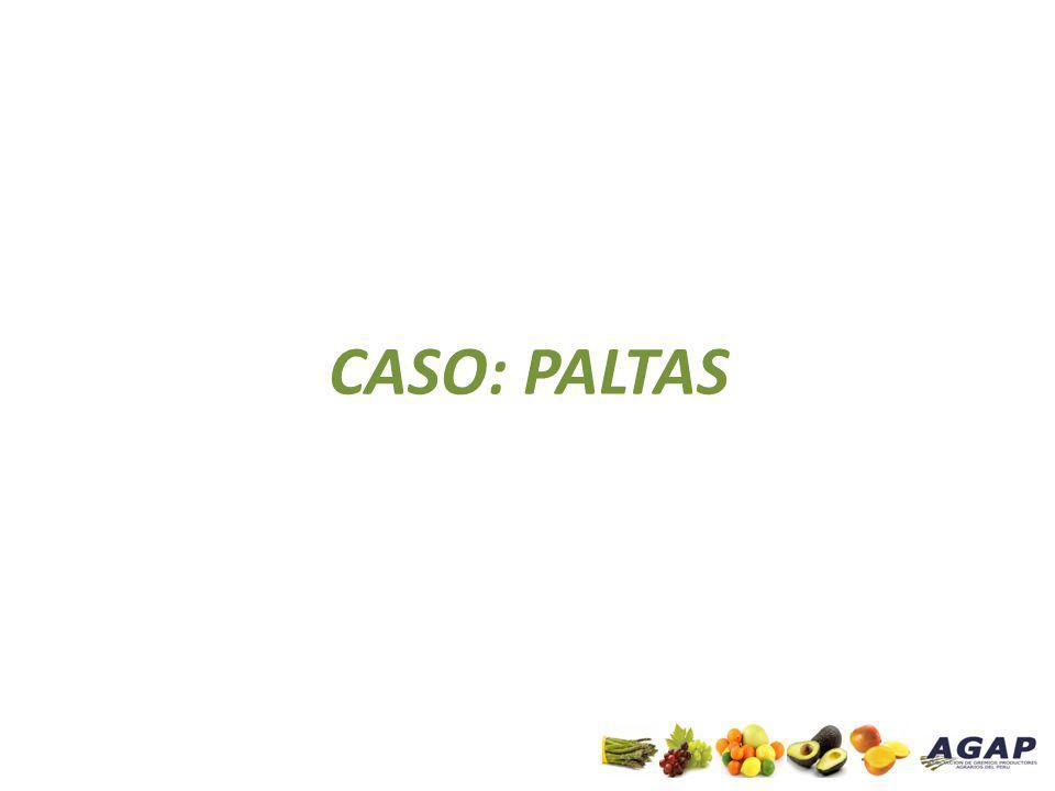 CASO: PALTAS