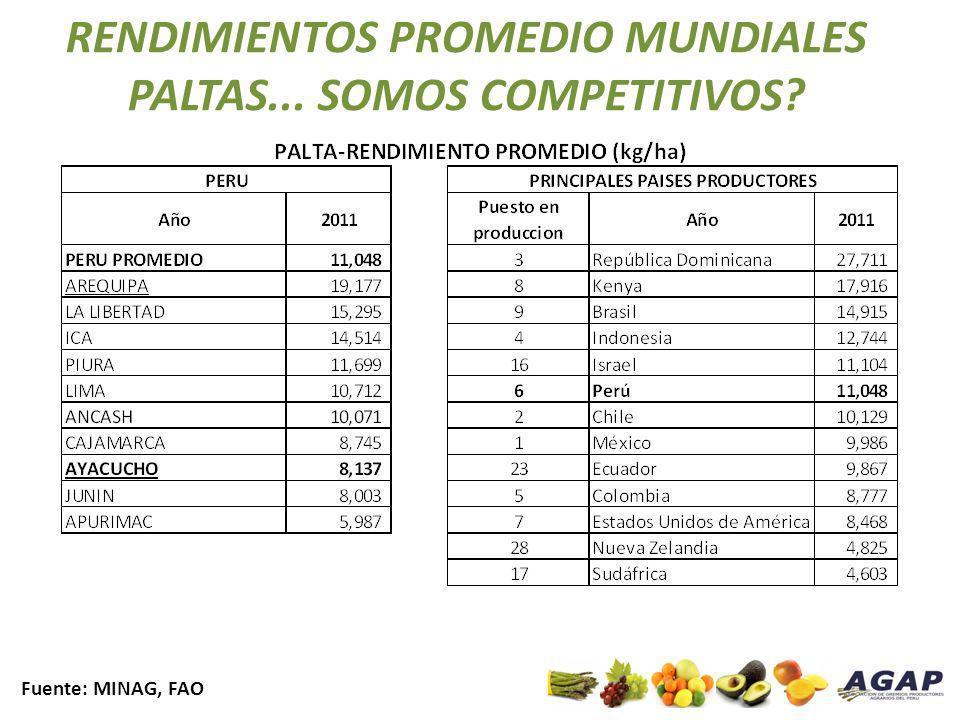 RENDIMIENTOS PROMEDIO MUNDIALES PALTAS... SOMOS COMPETITIVOS? Fuente: MINAG, FAO