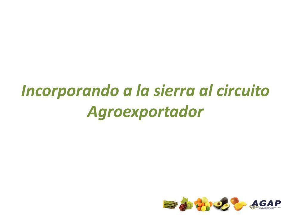 Principales Exportaciones Regionales Agrarias No tradicionales - TOTAL Fuente: SUNAT / ADEX Elaboración: AGAP