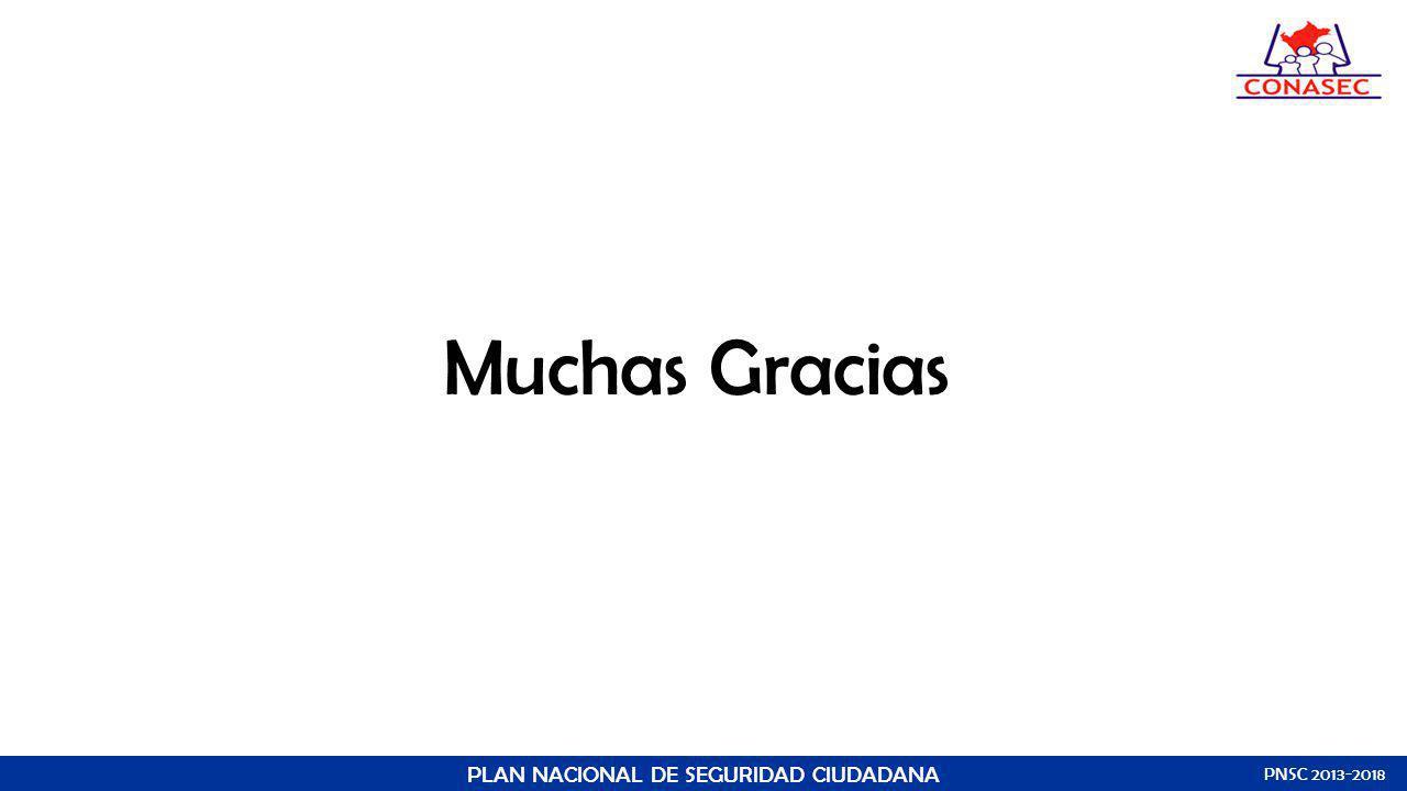Muchas Gracias PLAN NACIONAL DE SEGURIDAD CIUDADANA PNSC 2013-2018