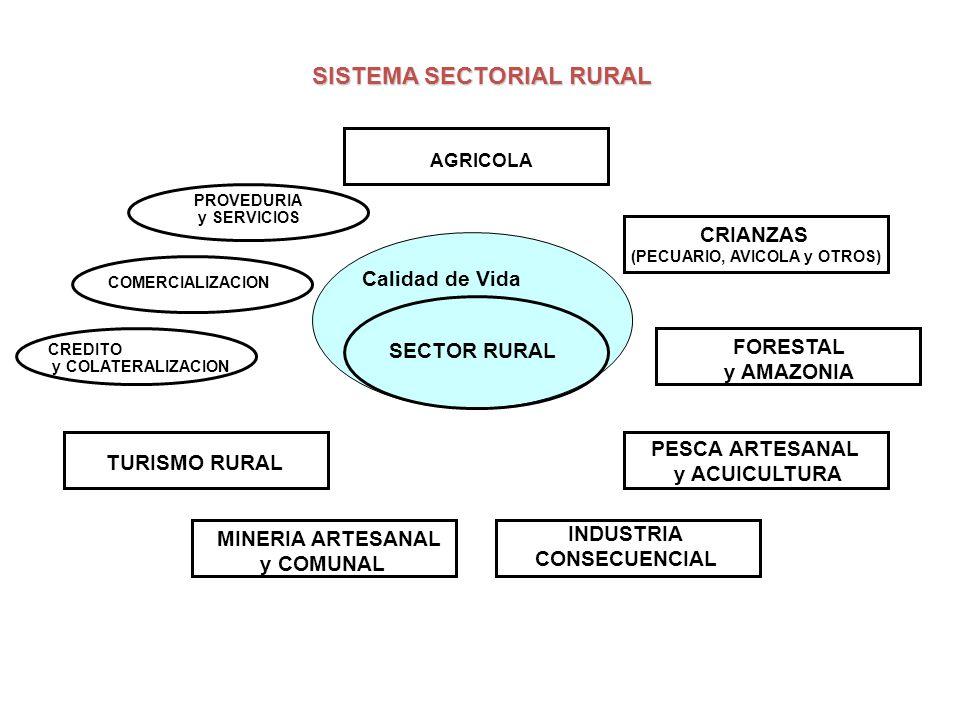 SISTEMA SECTORIAL RURAL SECTOR RURAL AGRICOLA CRIANZAS (PECUARIO, AVICOLA y OTROS) INDUSTRIA CONSECUENCIAL TURISMO RURAL CREDITO y COLATERALIZACION COMERCIALIZACION PROVEDURIA y SERVICIOS FORESTAL y AMAZONIA PESCA ARTESANAL y ACUICULTURA MINERIA ARTESANAL y COMUNAL Calidad de Vida Mercados de Mano de Obra, Mano de Obra Especializada Técnicos de Nivel Medio y Profesionales