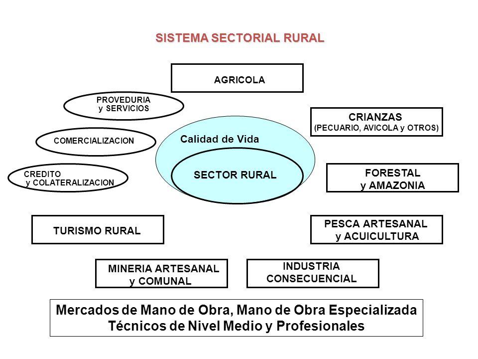LA PIRAMIDE SOCIO – ECONOMICA PERU: SOLUCION Ley 28298 / 28828 Marco para el Desarrollo del Sector Rural DL 1020 Ley 28890 Creación Sierra Exportadora EFECTO DE LA LEY DE PROMOCION PYMES DESCENTRALIZADAS