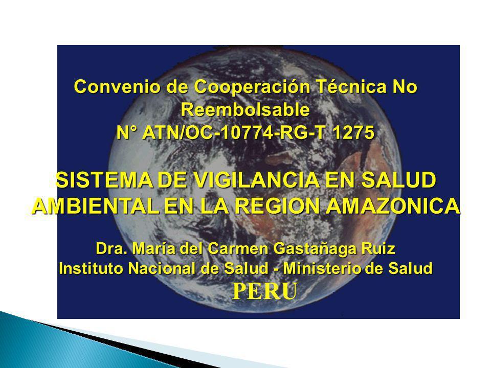 Convenio de Cooperación Técnica No Reembolsable N° ATN/OC-10774-RG-T 1275 SISTEMA DE VIGILANCIA EN SALUD AMBIENTAL EN LA REGION AMAZONICA Dra.