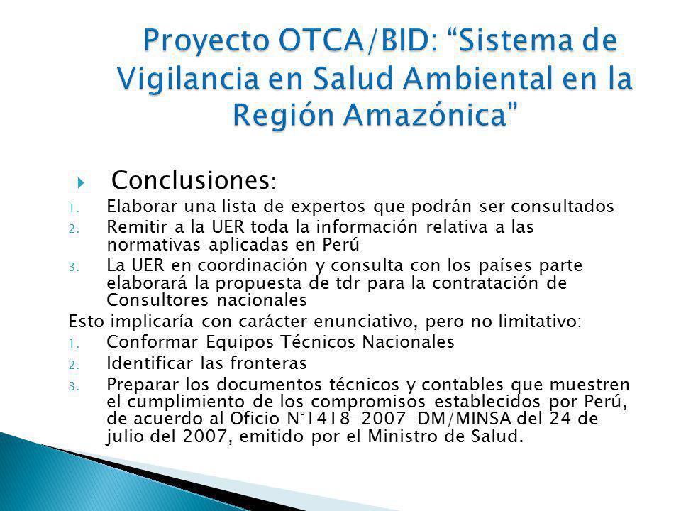 El 11 de agosto del 2010, el INS a través del Oficio N°990-2010-J-OPE/INS, acepta lo solicitado por la Embajadora Luzmila Zanabria, Subsecretaria para Asuntos Multilaterales del Ministerio de Relaciones Exteriores, de ser la sede y organizar el Taller Regional para elaborar el Plan de Salud 2010-2011 e implementar el SVSA en la Región Amazónica, los días 31 de agosto y 1° de setiembre del 2010.