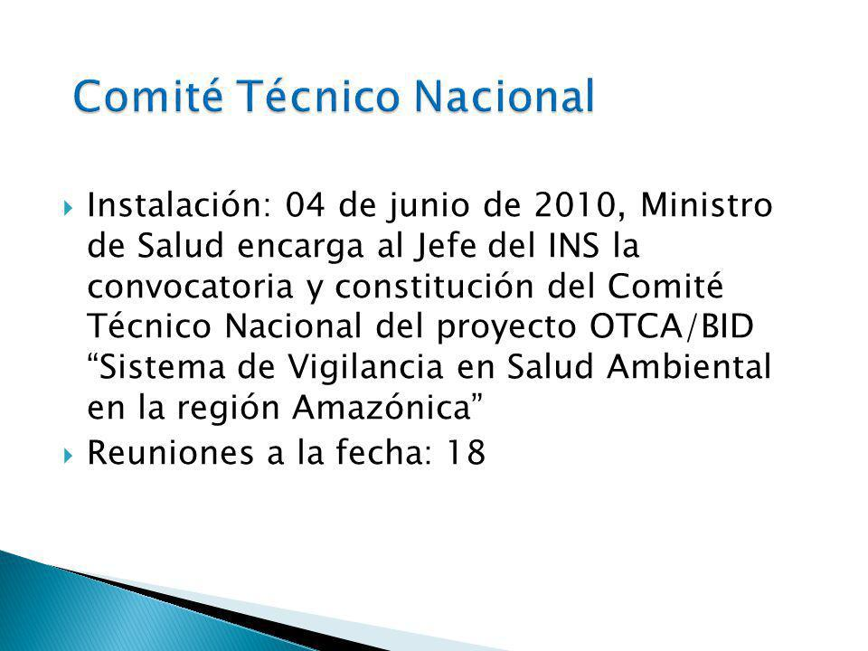 Instalación: 04 de junio de 2010, Ministro de Salud encarga al Jefe del INS la convocatoria y constitución del Comité Técnico Nacional del proyecto OTCA/BID Sistema de Vigilancia en Salud Ambiental en la región Amazónica Reuniones a la fecha: 18