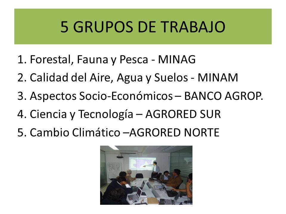 5 GRUPOS DE TRABAJO 1. Forestal, Fauna y Pesca - MINAG 2.