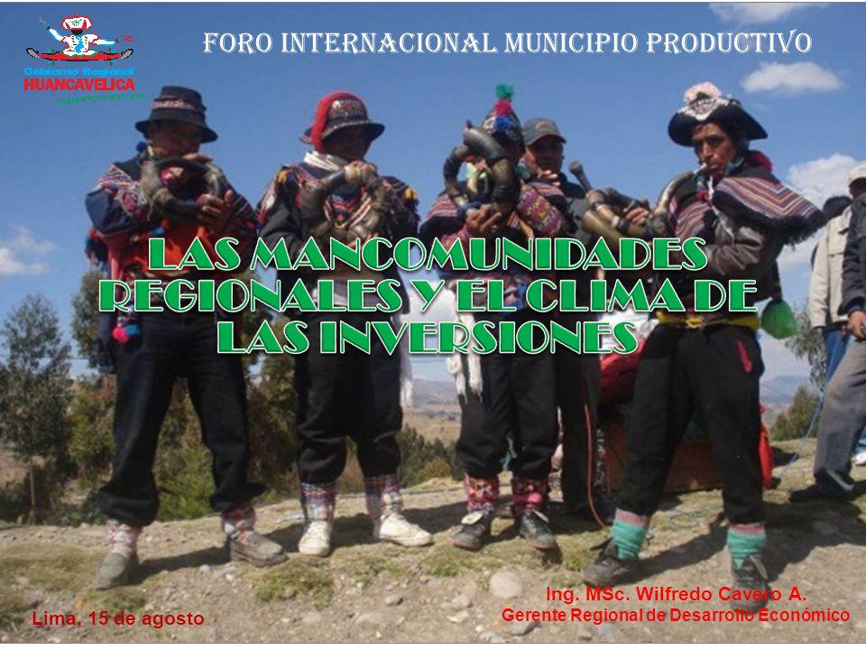 Ing. MSc. Wilfredo Cavero A.