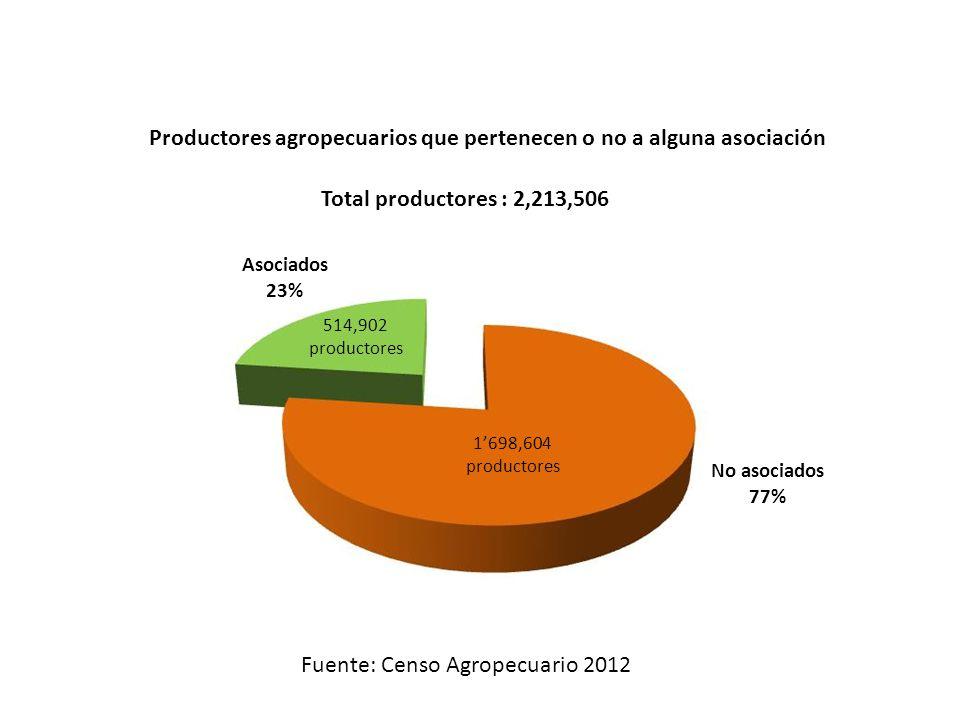 Productores agropecuarios que pertenecen o no a alguna asociación Asociados 23% No asociados 77% Fuente: Censo Agropecuario 2012 514,902 productores 1698,604 productores Total productores : 2,213,506