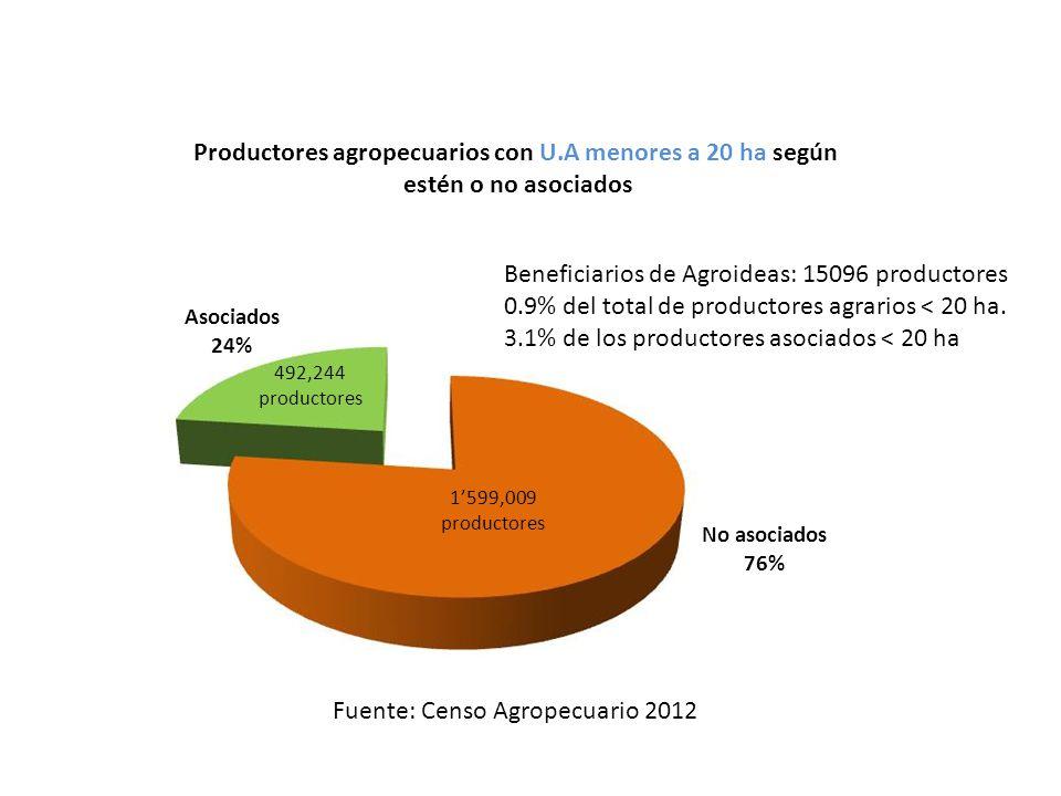 Productores agropecuarios con U.A menores a 20 ha según estén o no asociados Asociados 24% No asociados 76% Fuente: Censo Agropecuario 2012 492,244 productores 1599,009 productores Beneficiarios de Agroideas: 15096 productores 0.9% del total de productores agrarios < 20 ha.