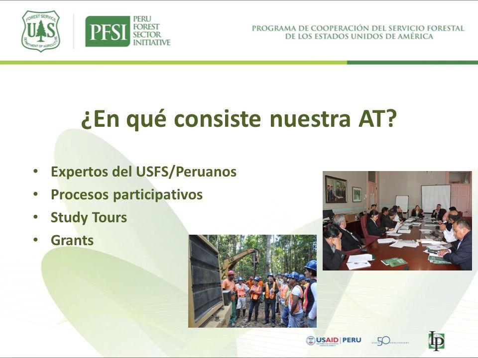 ¿En qué consiste nuestra AT? Expertos del USFS/Peruanos Procesos participativos Study Tours Grants