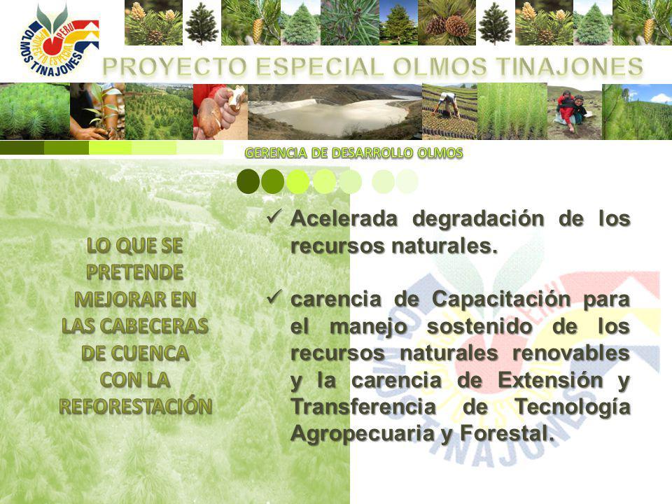 Acelerada degradación de los recursos naturales. Acelerada degradación de los recursos naturales. carencia de Capacitación para el manejo sostenido de