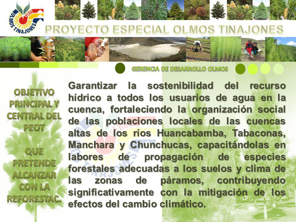 El área a reforestar en las cuencas mencionadas de acuerdo a las evaluaciones realizadas por técnicos del PEOT se estima en 40,000 ha, con una necesidad estimada de 25 Millones de Plantones Forestales que equivale a producir un promedio de 5 Millones de Plantones por año.