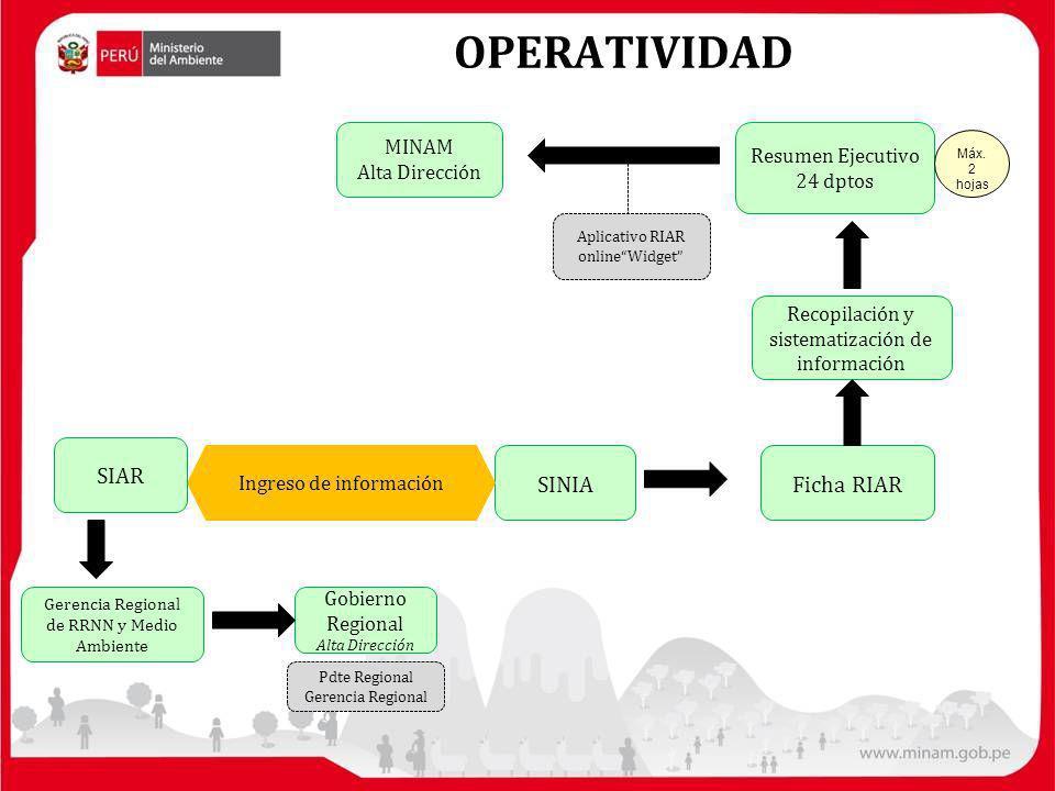 SINIA Ingreso de información Ficha RIAR Recopilación y sistematización de información MINAM Alta Dirección Resumen Ejecutivo 24 dptos Aplicativo RIAR