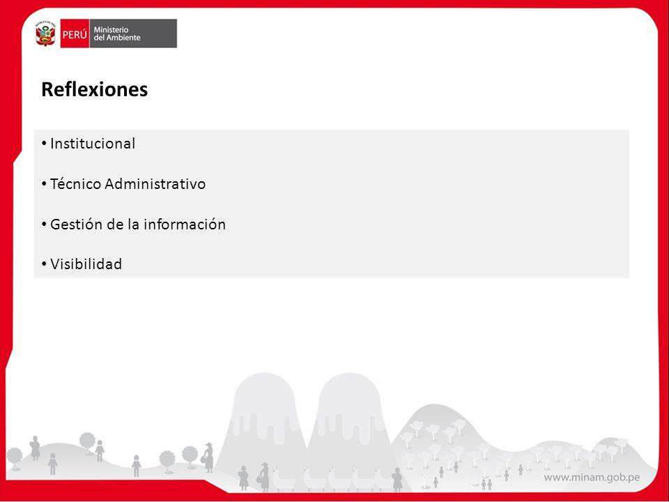 Reflexiones Institucional Técnico Administrativo Gestión de la información Visibilidad