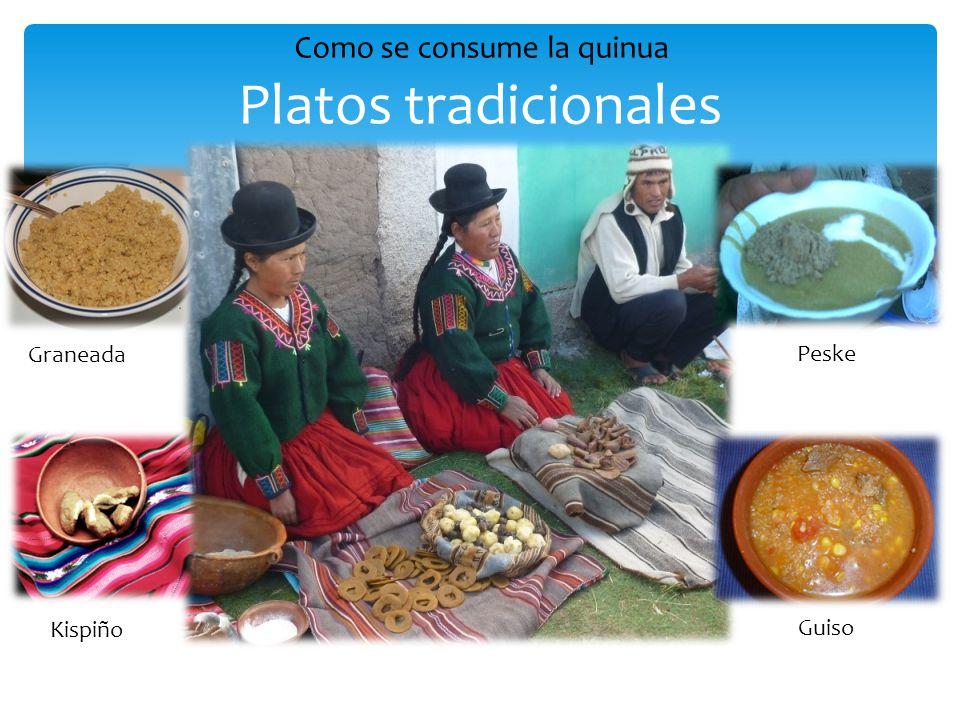 Platos tradicionales Graneada Kispiño Peske Guiso Como se consume la quinua