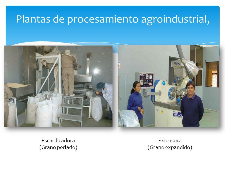 Plantas de procesamiento agroindustrial, Escarificadora (Grano perlado) Extrusora (Grano expandido)