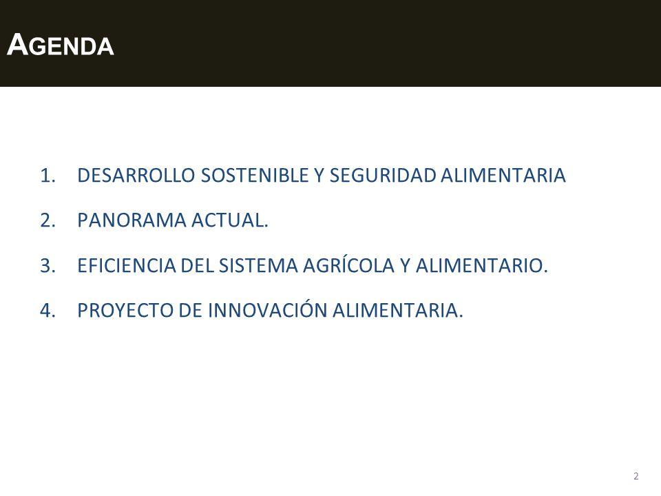 A GENDA 1.DESARROLLO SOSTENIBLE Y SEGURIDAD ALIMENTARIA 2.PANORAMA ACTUAL. 3.EFICIENCIA DEL SISTEMA AGRÍCOLA Y ALIMENTARIO. 4.PROYECTO DE INNOVACIÓN A