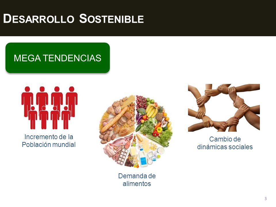 D ESARROLLO S OSTENIBLE 3 MEGA TENDENCIAS Incremento de la Población mundial Demanda de alimentos Cambio de dinámicas sociales