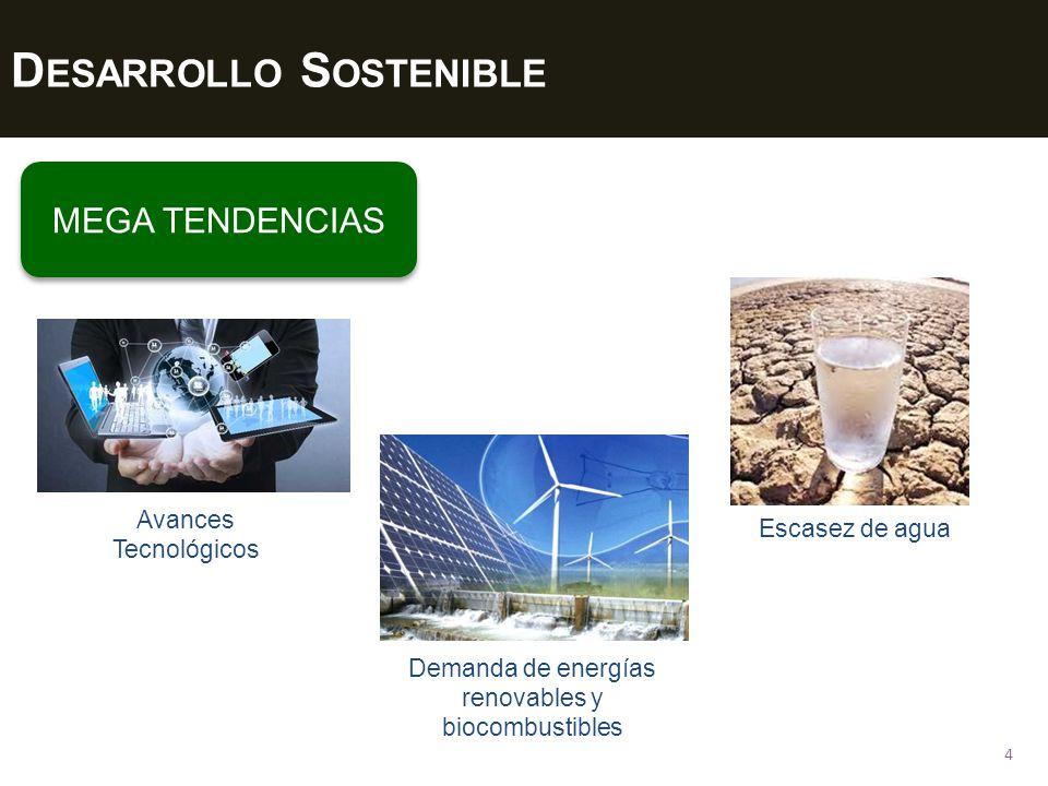 D ESARROLLO S OSTENIBLE 5 MEGA TENDENCIAS Cambios climáticos