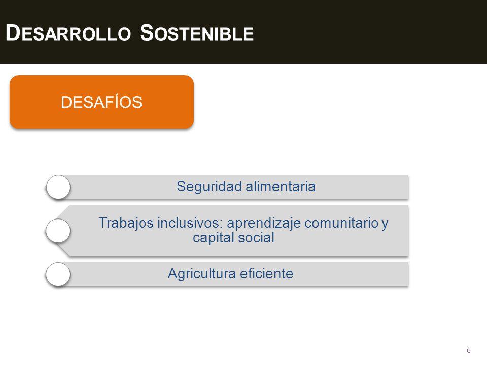 D ESARROLLO S OSTENIBLE 6 DESAFÍOS Seguridad alimentaria Trabajos inclusivos: aprendizaje comunitario y capital social Agricultura eficiente