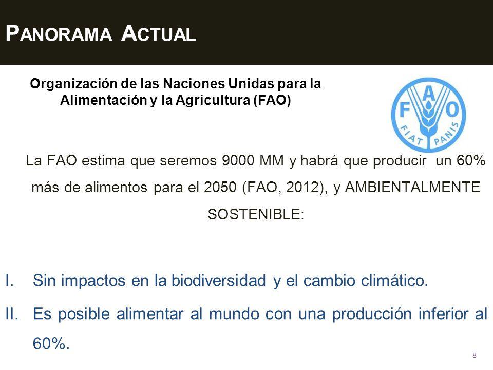 P ANORAMA A CTUAL 8 I.Sin impactos en la biodiversidad y el cambio climático. II.Es posible alimentar al mundo con una producción inferior al 60%. Org