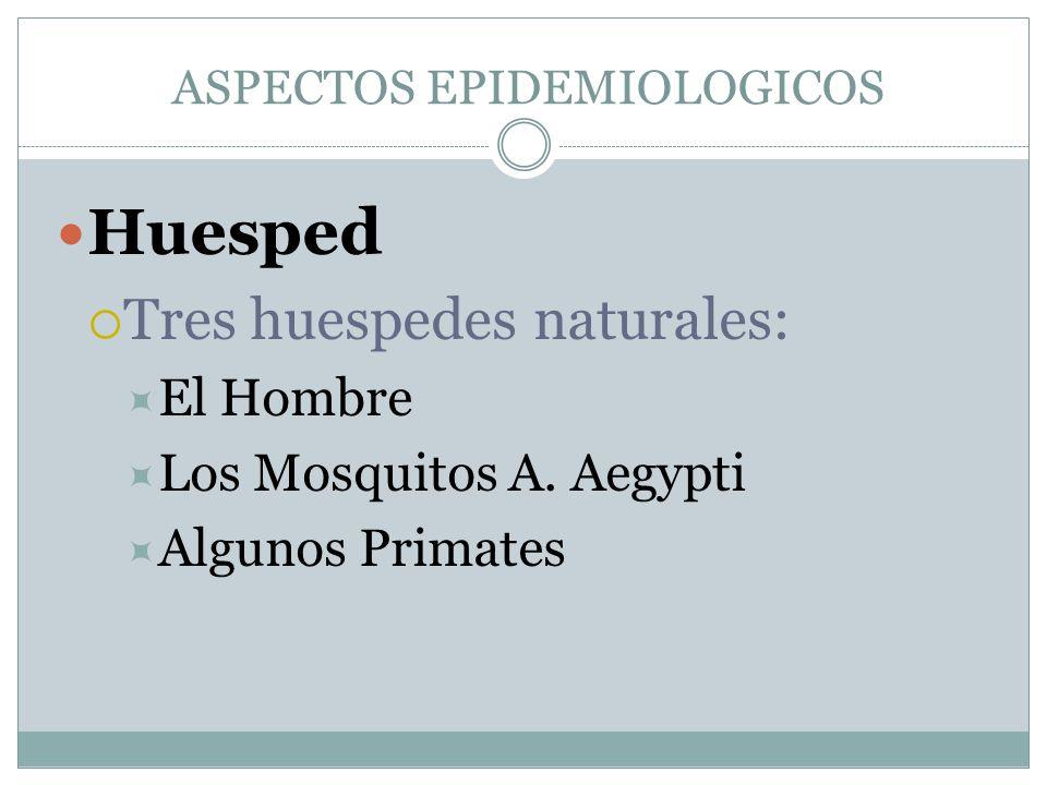ASPECTOS EPIDEMIOLOGICOS Huesped Tres huespedes naturales: El Hombre Los Mosquitos A. Aegypti Algunos Primates