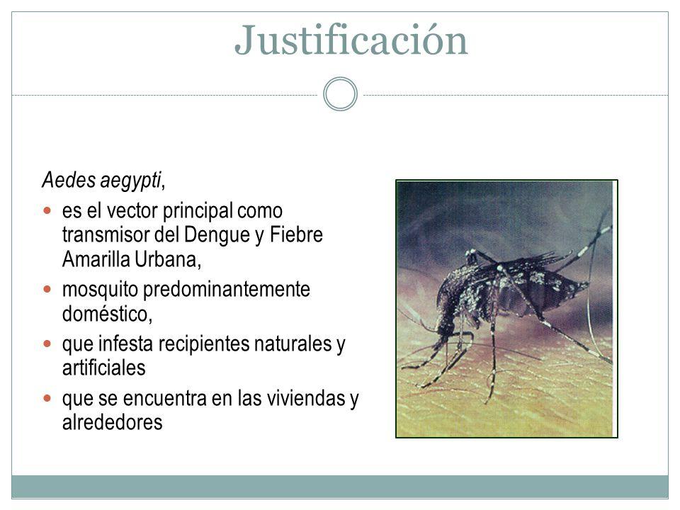 Justificación Aedes aegypti, es el vector principal como transmisor del Dengue y Fiebre Amarilla Urbana, mosquito predominantemente doméstico, que inf