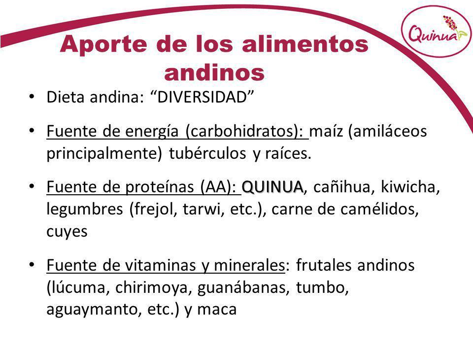 Aporte de los alimentos andinos Dieta andina: DIVERSIDAD Fuente de energía (carbohidratos): maíz (amiláceos principalmente) tubérculos y raíces. QUINU