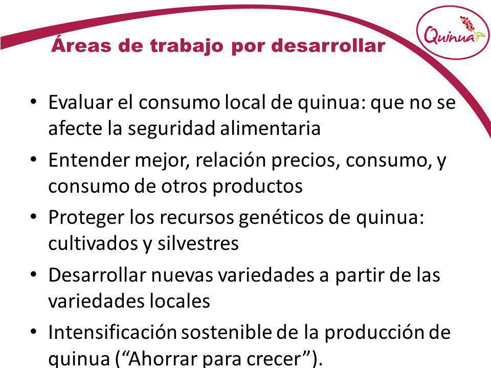 Áreas de trabajo por desarrollar Evaluar el consumo local de quinua: que no se afecte la seguridad alimentaria Entender mejor, relación precios, consu