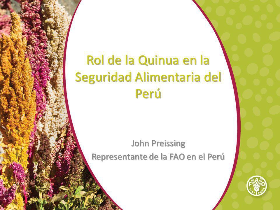 Rol de la Quinua en la Seguridad Alimentaria del Perú John Preissing Representante de la FAO en el Perú