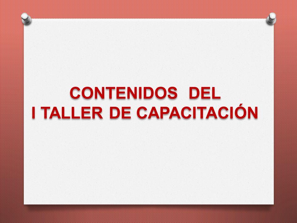CONTENIDOS DEL I TALLER DE CAPACITACIÓN
