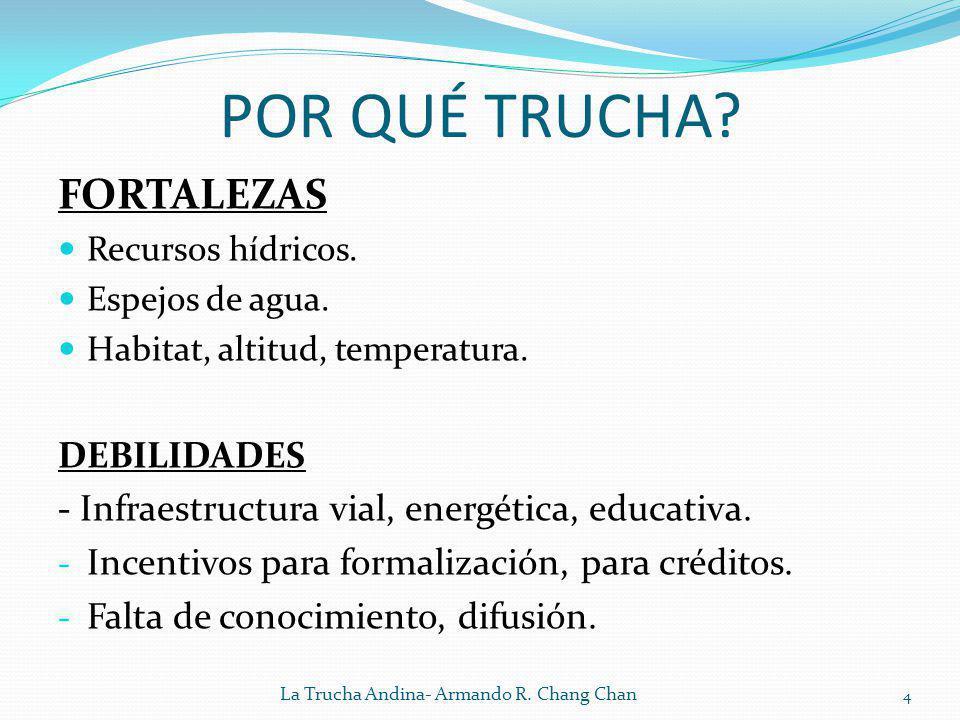 POR QUÉ TRUCHA? FORTALEZAS Recursos hídricos. Espejos de agua. Habitat, altitud, temperatura. DEBILIDADES - Infraestructura vial, energética, educativ