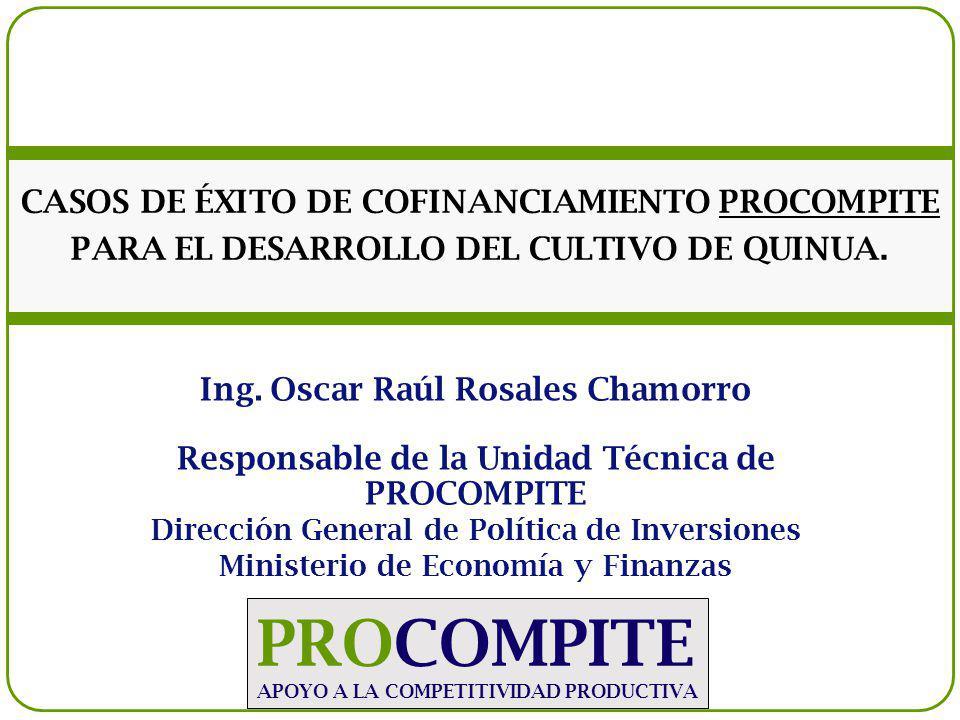 Ing. Oscar Raúl Rosales Chamorro Responsable de la Unidad Técnica de PROCOMPITE Dirección General de Política de Inversiones Ministerio de Economía y
