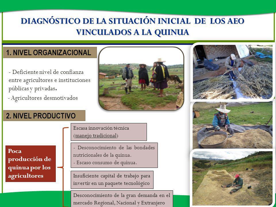 DIAGNÓSTICO DE LA SITUACIÓN INICIAL DE LOS AEO VINCULADOS A LA QUINUA 1. NIVEL ORGANIZACIONAL - Deficiente nivel de confianza entre agricultores e ins