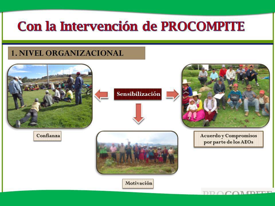 Acuerdo y Compromisos por parte de los AEOs SensibilizaciónSensibilización 1. NIVEL ORGANIZACIONAL MotivaciónMotivación ConfianzaConfianza