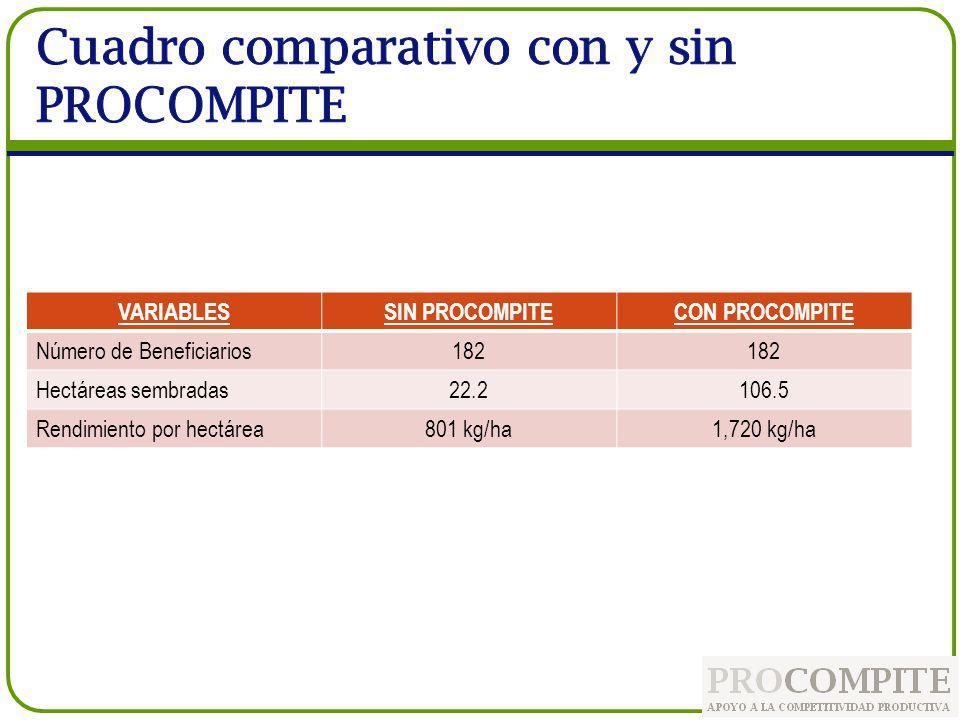 VARIABLESSIN PROCOMPITECON PROCOMPITE Número de Beneficiarios182 Hectáreas sembradas22.2106.5 Rendimiento por hectárea801 kg/ha1,720 kg/ha