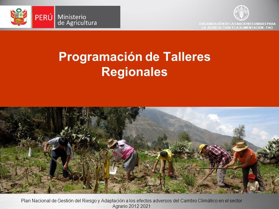 Plan Nacional de Gestión del Riesgo y Adaptación a los efectos adversos del Cambio Climático en el sector Agrario 2012 2021 Programación de Talleres Regionales ORGANIZACIÓN DE LAS NACIONES UNIDAS PARA LA AGRICULTURA Y LA ALIMENTACION - FAO