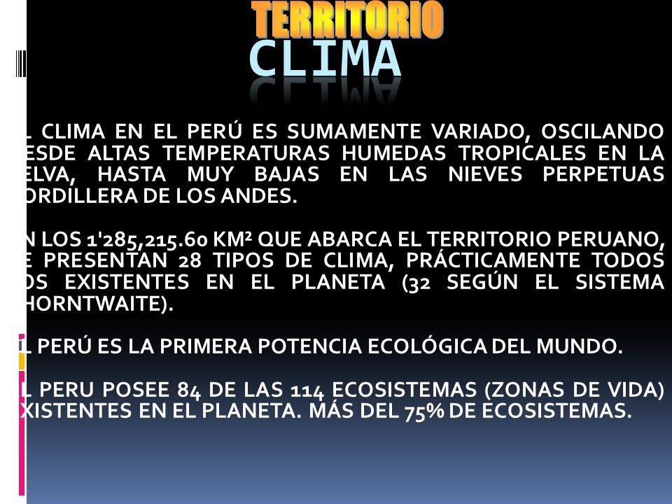 EJES DE INTEGRACIÓN, DESARROLLO Y SEGURIDAD PARA LOS PRÓXIMOS 50 AÑOS