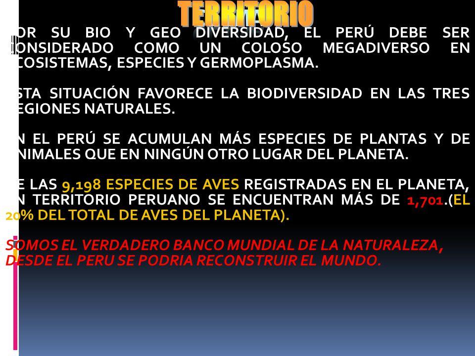 EL CLIMA EN EL PERÚ ES SUMAMENTE VARIADO, OSCILANDO DESDE ALTAS TEMPERATURAS HUMEDAS TROPICALES EN LA SELVA, HASTA MUY BAJAS EN LAS NIEVES PERPETUAS C